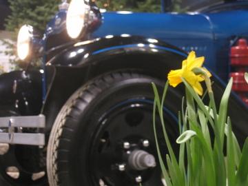 Metrospokane Home Garden Show Underwhelming
